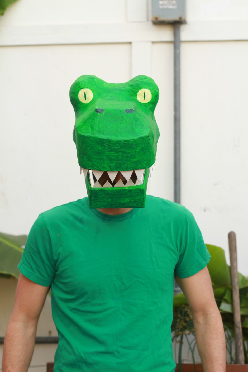 Paper Mache Dinosaur Mask Diy How To