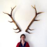 DIY Deer Antlers