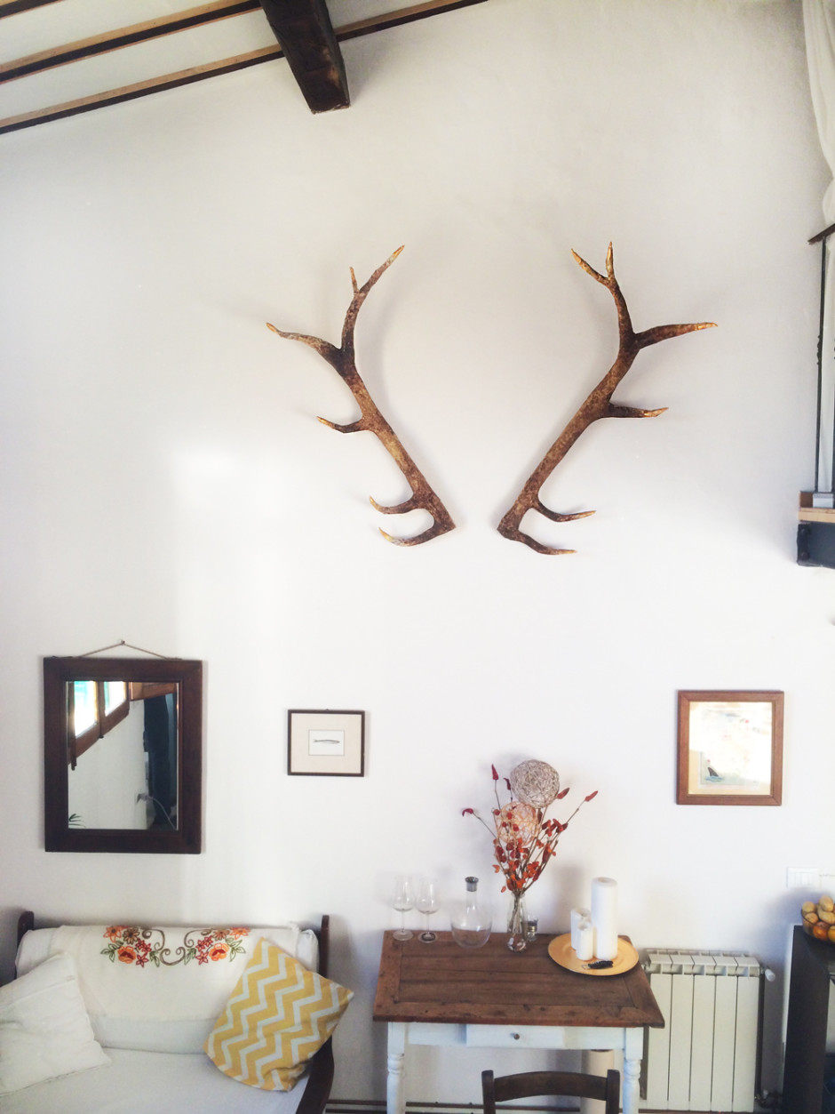 A deer antler DIY for an awesome vegan-friendly, faux taxidermy look!